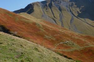 Rando: Circuit par les Combes de l'Etale et de Tardevanr