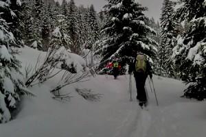 Ski nordique au Danay