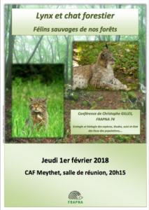 Conférence le 1er février 2018: les félins sauvages de nos forêts
