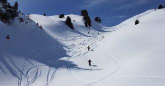 La pratique du ski de randonnée